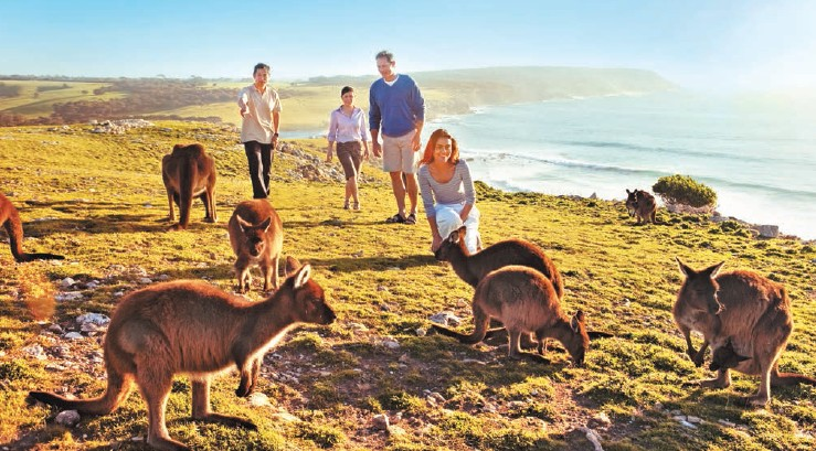 There is rising trend of Indian travellers opting for non-traditional destinations like Kangaroo Island