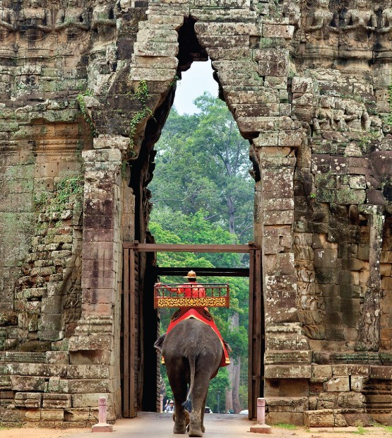 Elephant entering the gate of Angkor Thom in Cambodia