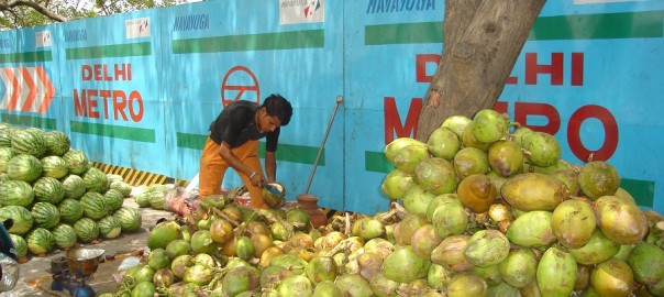 Green_Coconut_Vendor_in_India_in_Summer