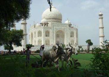 Quelles sont les meilleures saisons pour voyager en Inde ?