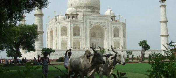 Taj Mahal à Agra, Uttar Pradesh