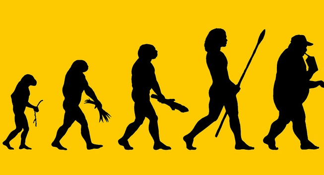 A depiction of how the patterns of diet and consumption have evolved.