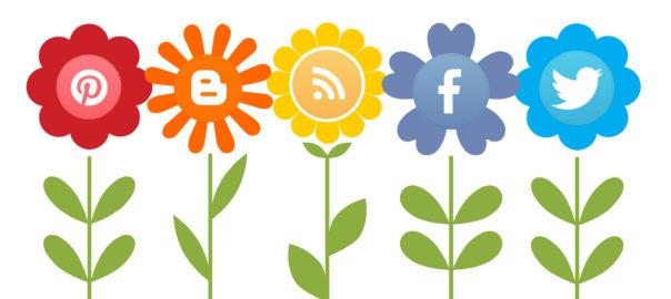 pbd-social-media-session