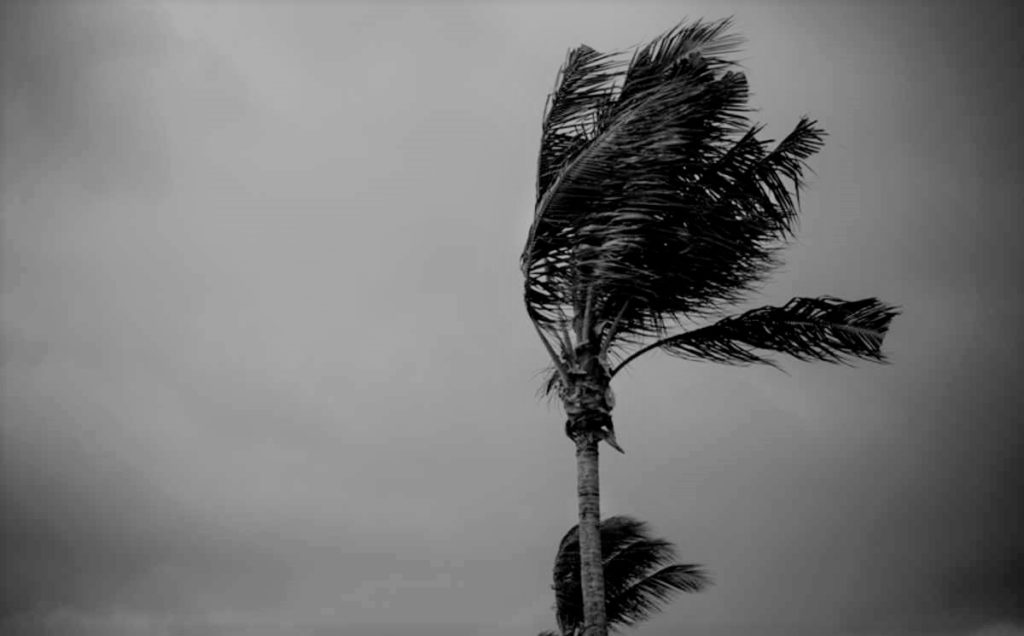 LATEST: Vardah Cyclone: Worst is over for Chennai. Few spells possible tonight.