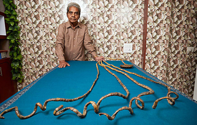 Longest fingernails on a single hand