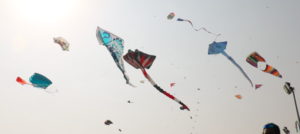 The International Kite Festival was celebrated with large enthusiasm in Gujarat