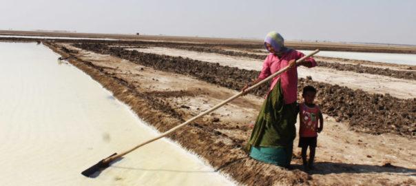 Un dur labeur: une femme laboure la terre, sous une chaleur insupportable