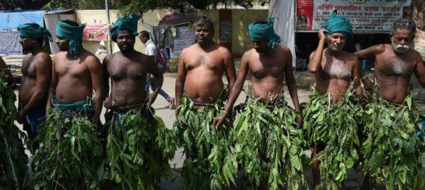 tn_farmer_media_india