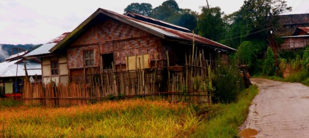 A typical hut in Ziro Valley, made with bamboo and some amount of tin
