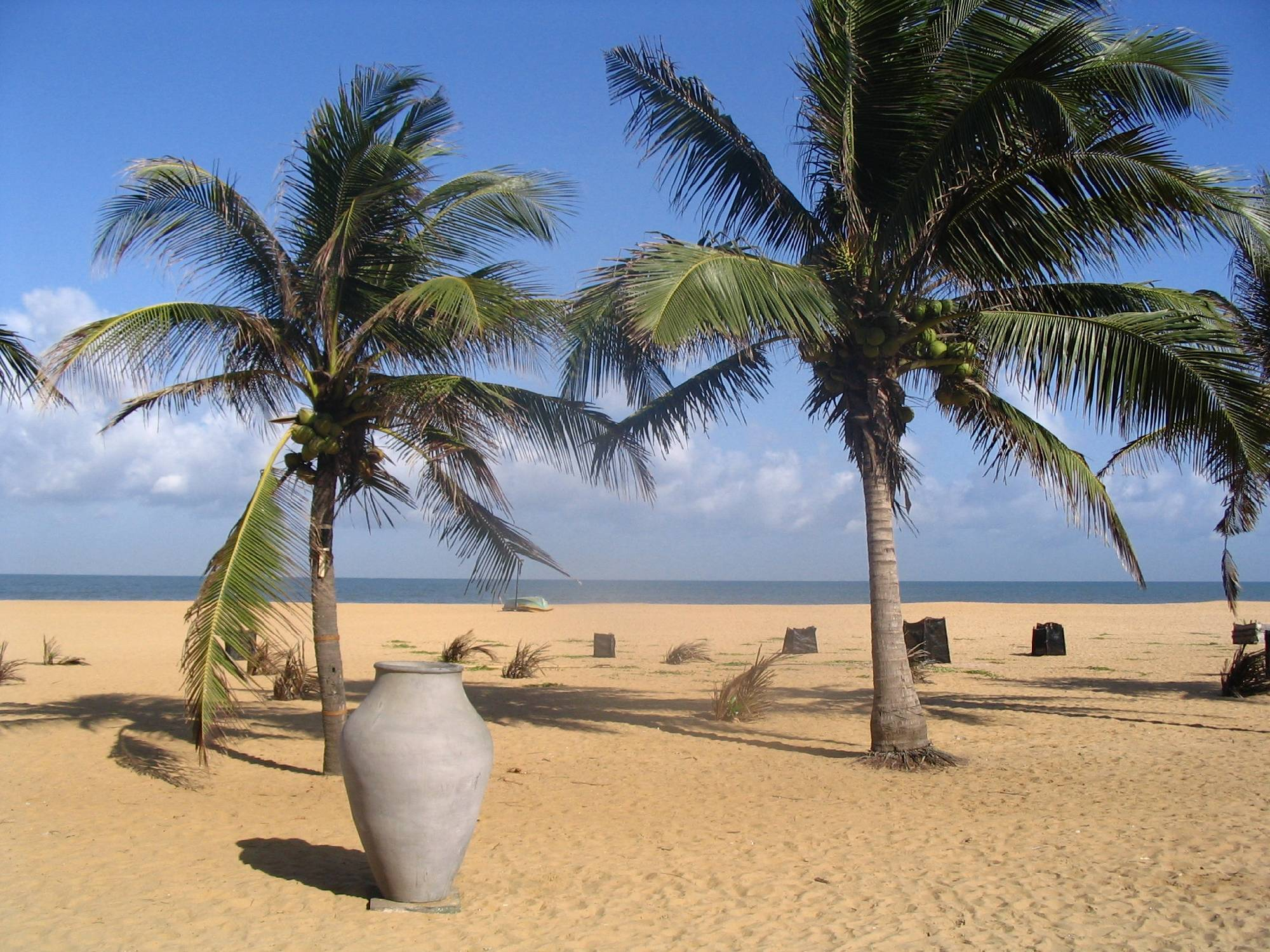 Negombo, 35 km north of Colombo is known for its centuries old busy fish markets and long, sandy beaches. A westernised, vibrant city and one of the major tourist destinations of Sri Lanka will host PAS 2017
