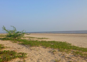 Henry's Island: A quaint getaway in West Bengal