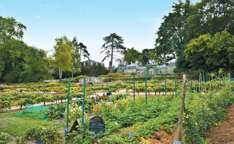 The Potager des Princes (the Princes kitchen garden), an independent domain a few hundred meters away from the horse museum of Chantilly. It displays a theatre by a lake, a Living Museum of Farmyard and a splendid Gardens Museum