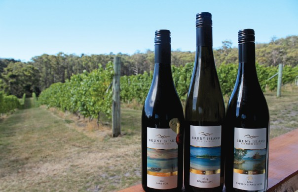 Tasting the Bruny Island Premium Wines, the southernmost vineyard in Australia