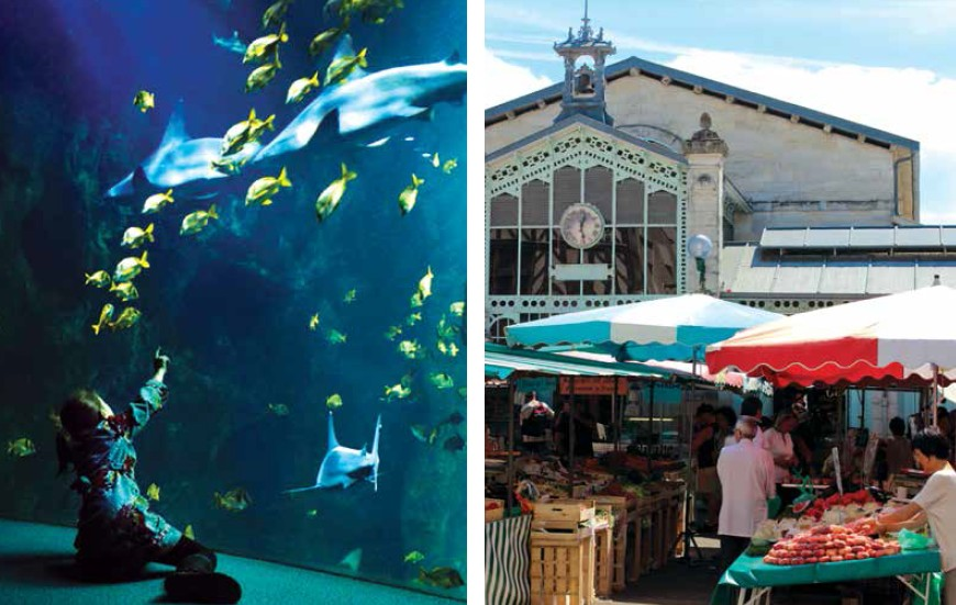 (Left) The aquarium at La Rochelle will take you to a maritime journey; (Right) The food market of Ars-en-Ré will soothe your taste buds