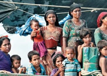 La détresse des Rohingyas