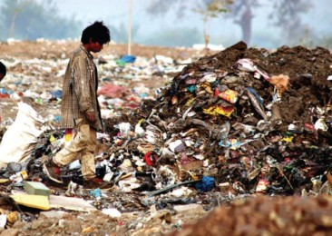 Abfallmanagement Eine Fülle von Möglichkeiten