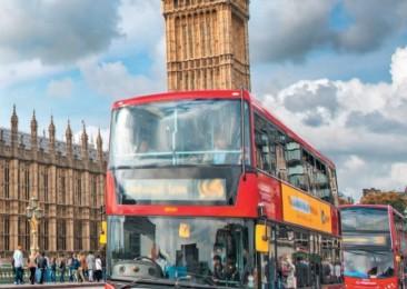 London's Colourful Summer