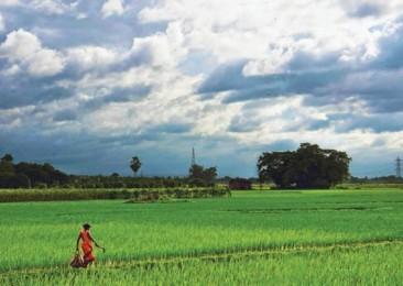 L'économie indienne suspendue à la mousson