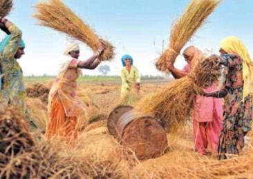 Women in Workforce India Misses its Lady Luck