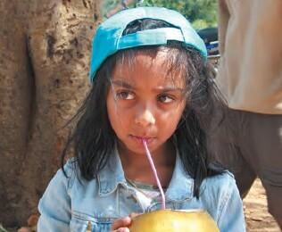 La noix de coco