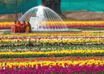Le jardin et le paradis
