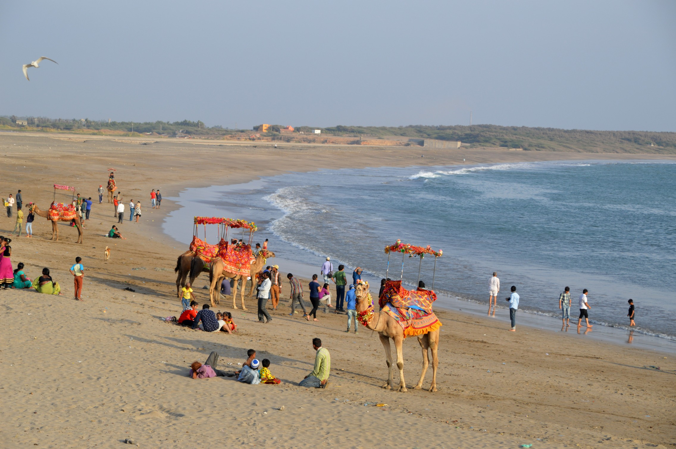 The Somnath Beach, adjoining the temple, has more life than the other beaches in Gujarat, thanks to its location
