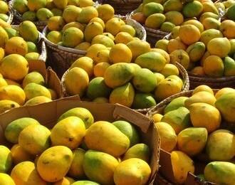 Mango Muddle