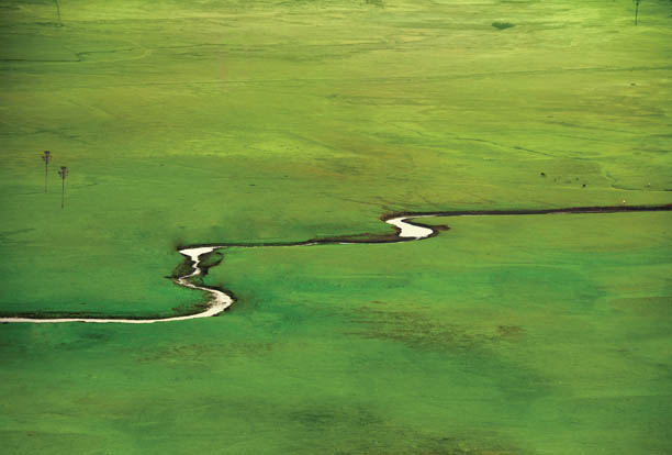 Dadra Nagar Haveli has expansive grasslands; this one at Khanvel is a tourist spot