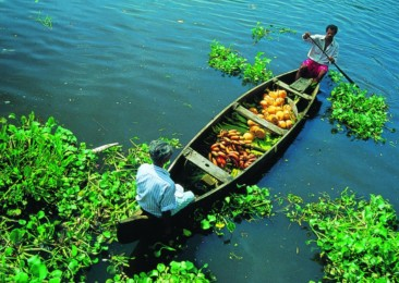 Kerala tourism garners global attention