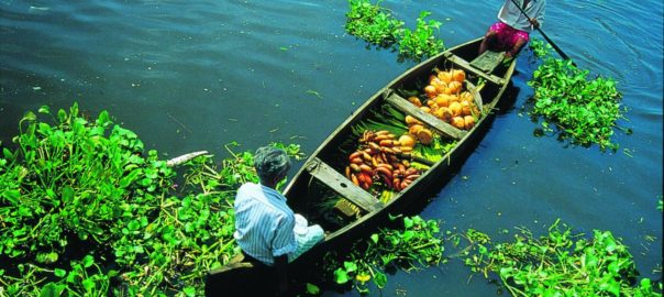 Kerala keeps fascinating international tourists with a plethora of unique tourism products