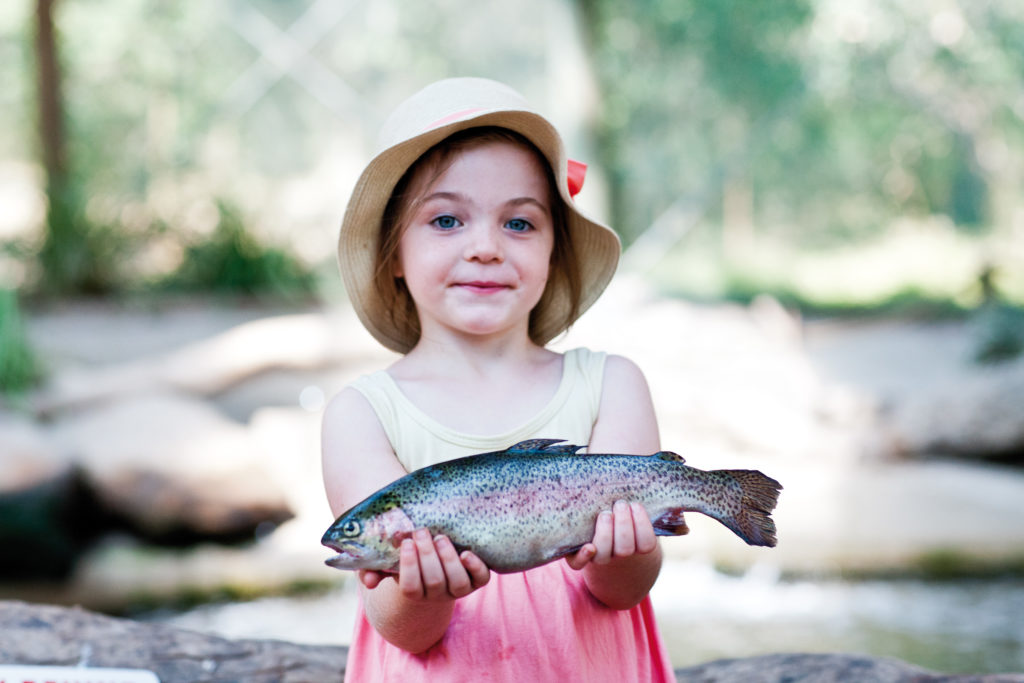 Taste the local delicacies of Rhyll Trout and Bush Tucker