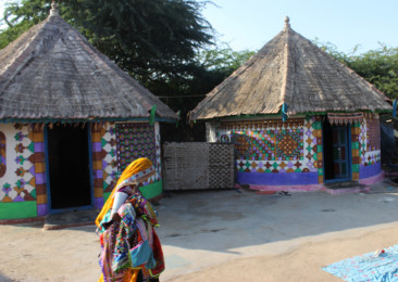 A glimpse of rural life in Gujarat