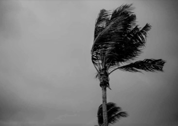 Cyclone Vardah impedes usual life in southern India