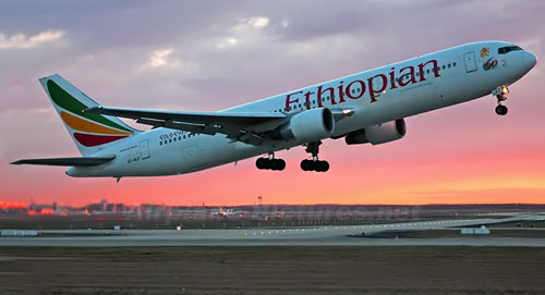 Ethiopian Airlines has become one of Africa's leading carriers, unrivalled in efficiency and operational success