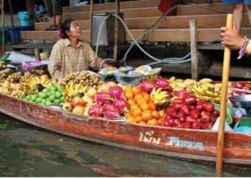 Veggie Delights in Thailand