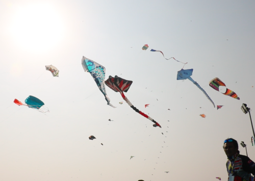 The culture of kite flying in India