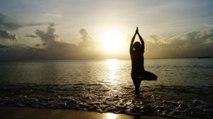 Yoga festivals to be held in 2017 in India are set to attract visitors from across the globe