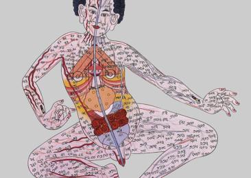 Tibetan Science of Healing in India