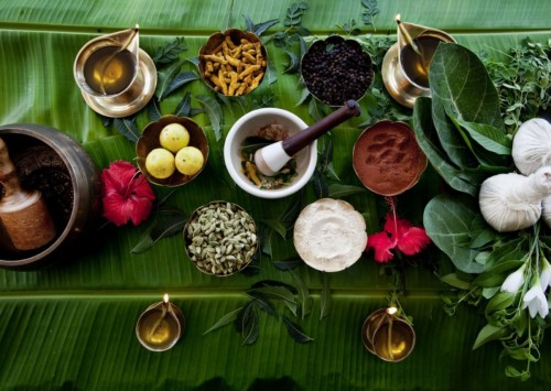 On Ayurveda Day Indian PM inaugurates Ayurveda institute
