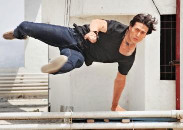 Stuntmen of Indian Cinema