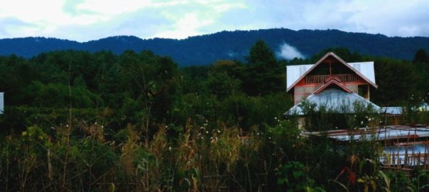 Une balade tranquille à travers les champs de la vallée