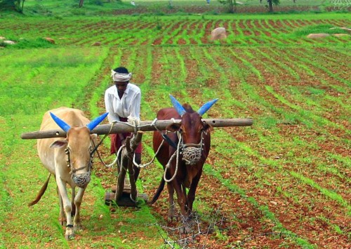 Artists, Activists stand in solidarity with farmers at Kisan Mukti Morcha