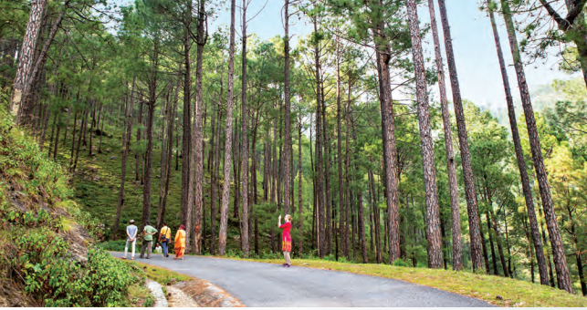 More than 65 pc of Uttarakhand is covered with forest leading to high migration rate, which is why the state is focusing on start-ups to keep the youth invested in their home town
