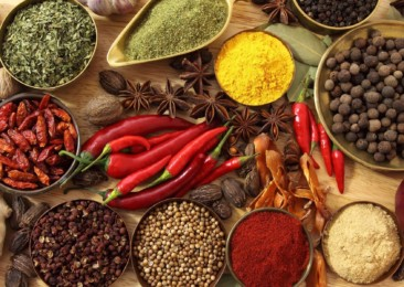 India registers 11 pc rise in spice export