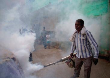 Les moustiques en Inde