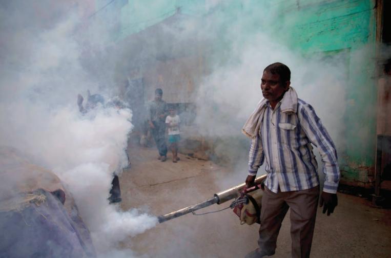 Traitement à grande échelle par fumigation : l'Inde utilise encore du DDT, un insecticide pourtant interdit dès les années 1970