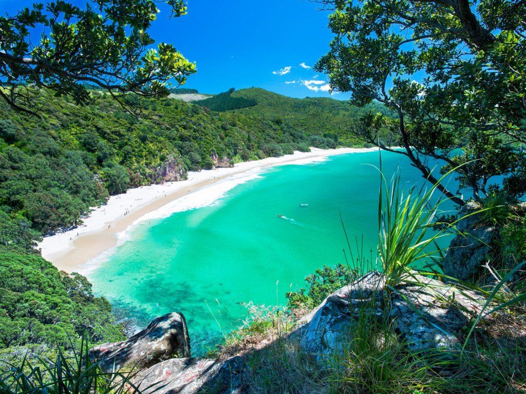 nz-best-beaches-chums-bay