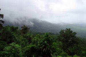 Goa is home to several natural sites such as Mollem National Park