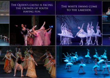 Swan Lake travels to New Delhi