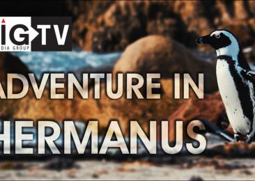 Adventure in Hermanus